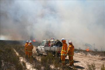 Fire crew in field