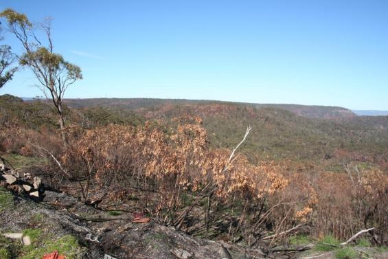 Assist us with research into the October 2013 NSW bushfires