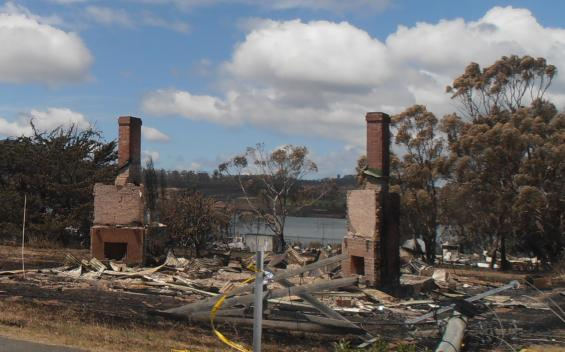 Australia's leading bushfire researchers will investigate the Tasmanina fires