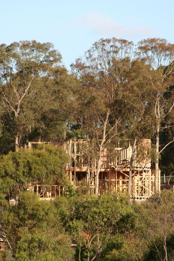 Bushfire reaches tertiary level