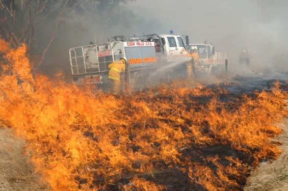 Firefighters extinguishing a grass fire