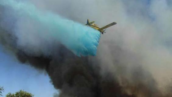 Bushfire research in the mallee bush