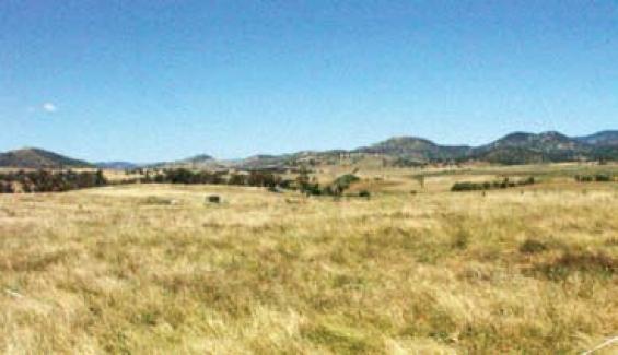 Satellites improve grassland curing assessments