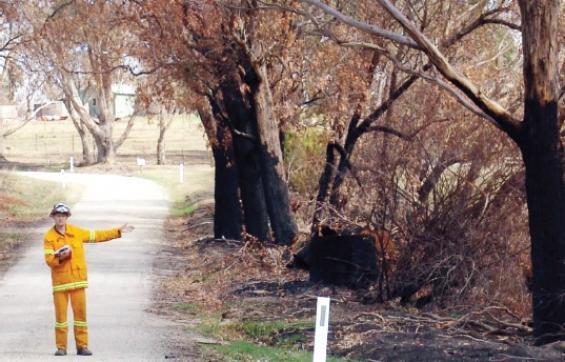 Fire Behaviour Investigation – Field Data Collection