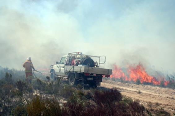 Smoke emissions from a bushfire
