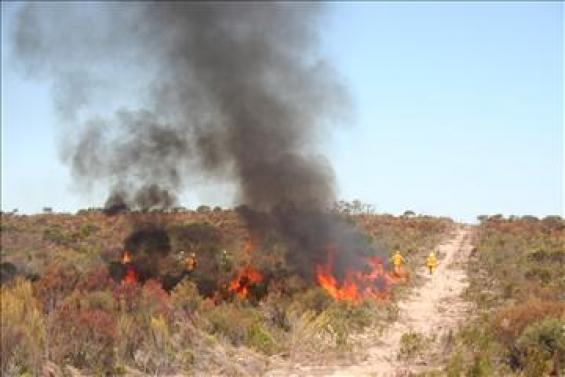 Fire in low scrubland