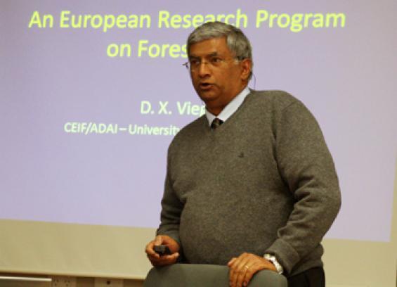 Professor Domingos Xavier Viegas