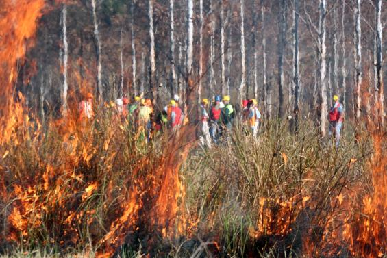 Bushfire research in Victoria has been enhanced with a series of new projects