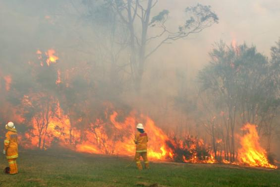 Fire at somersby falls